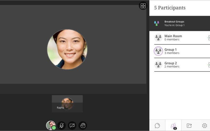 screenshot of blackboard collaborate ultra breakout groups