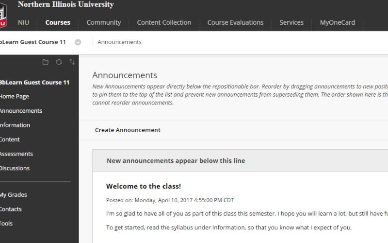 new course theme in blackboard