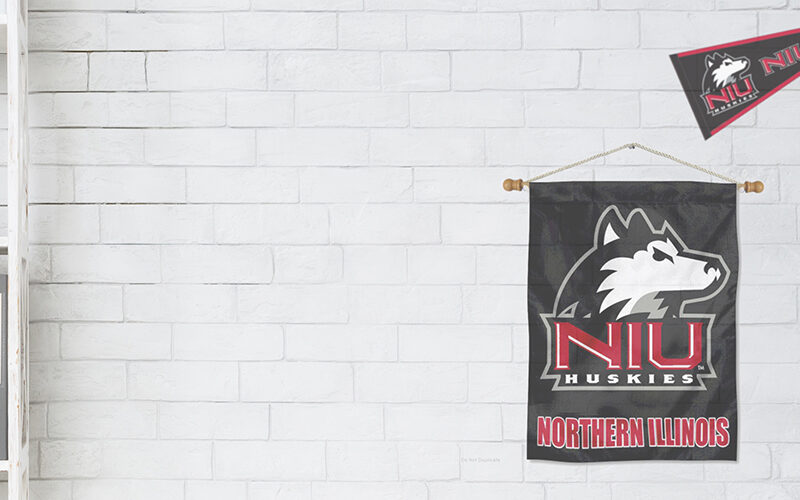 gray background with NIU logo