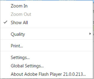 Flash context menu